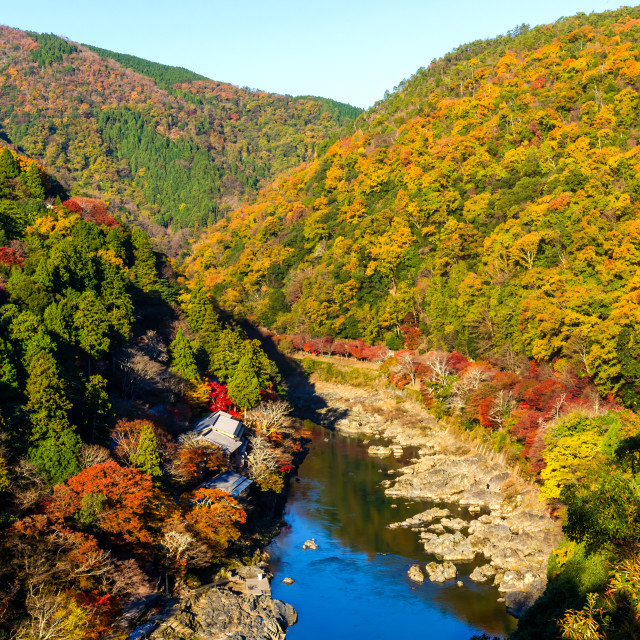 """""""top view point of the river and forest in autumn season, beautiful fall colorful at Arashiyama, Kyoto, Japan"""" stock image"""