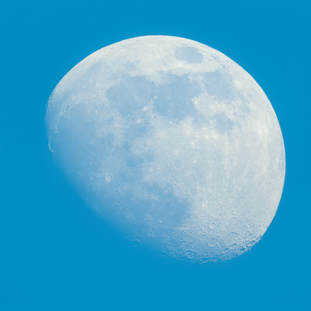 """""""Moon in Waxing Gibbous phase on the daytime blue sky"""" stock image"""