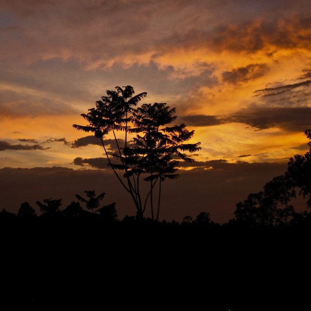 """Sunrise in eSwatini"" stock image"