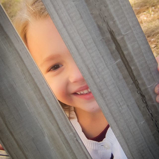 """Little Girl Peekng Through Fence"" stock image"
