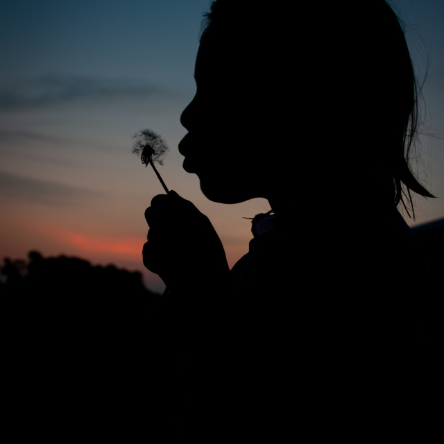 """Silhouette of Girl Blowing Dandelion"" stock image"