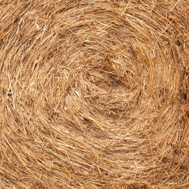 """Textured Background of Hay Bale on a Farm"" stock image"