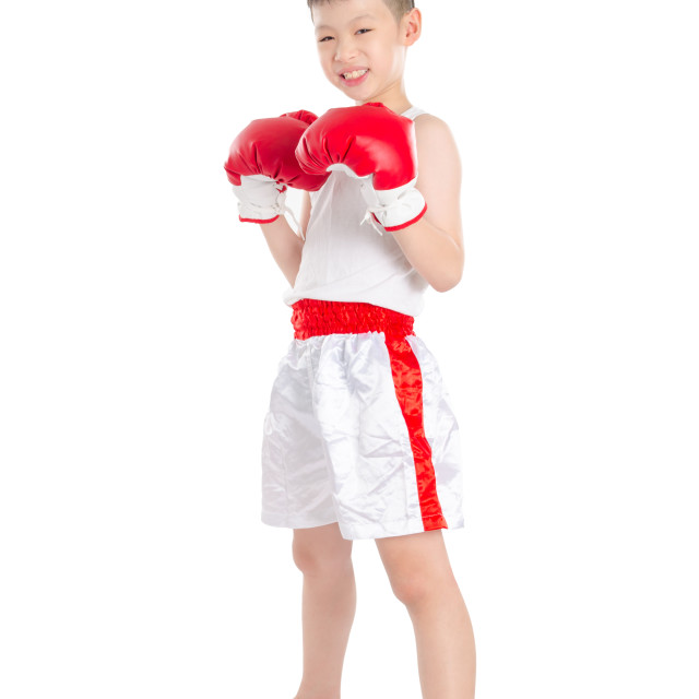 """boxer boy standing over white background"" stock image"