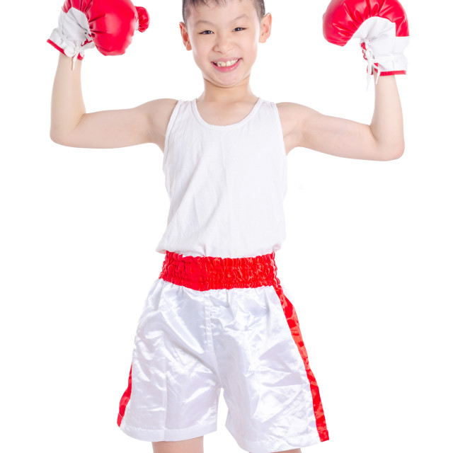 """Young boxer over white background"" stock image"