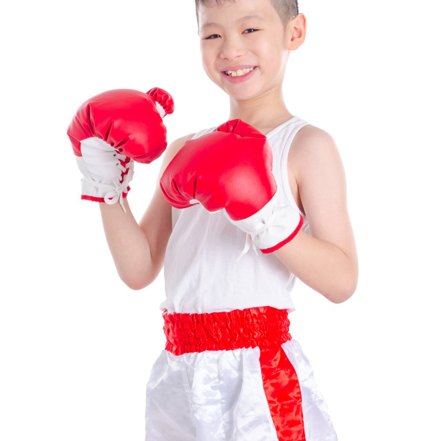 """Young boxer isolated over white background"" stock image"
