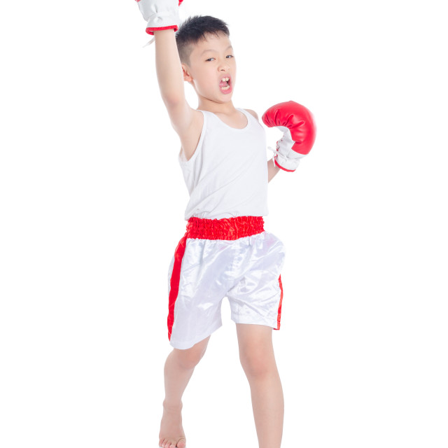 """Young boxer boy over white background"" stock image"