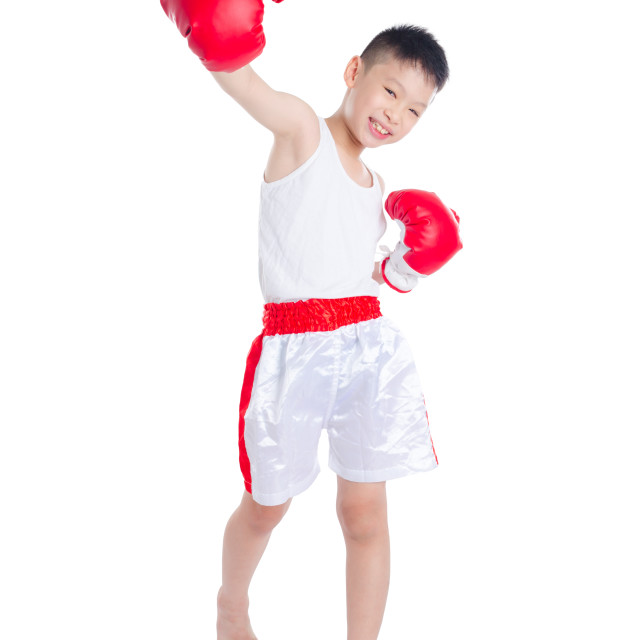 """boxer boy isolated over white background"" stock image"