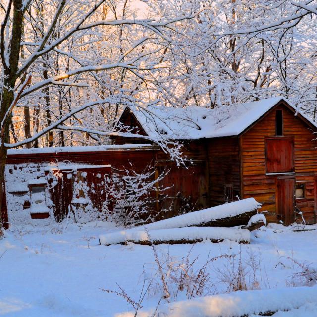 """Old Barn on Christmas Day Morning"" stock image"