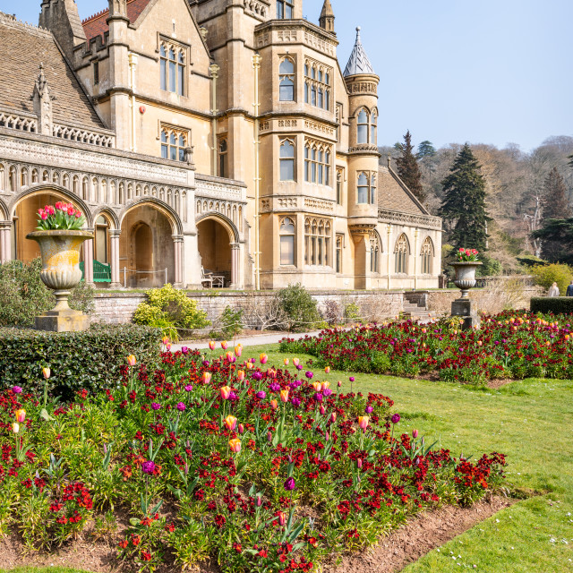 """Tyntesfield, Wraxall, North Somerset,"" stock image"