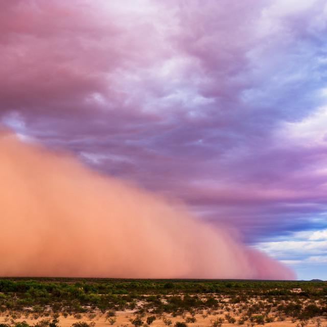 """""""Dust storm in the desert"""" stock image"""