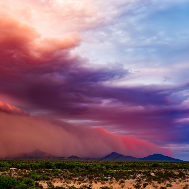 """Dust storm in the desert at sunset"" stock image"