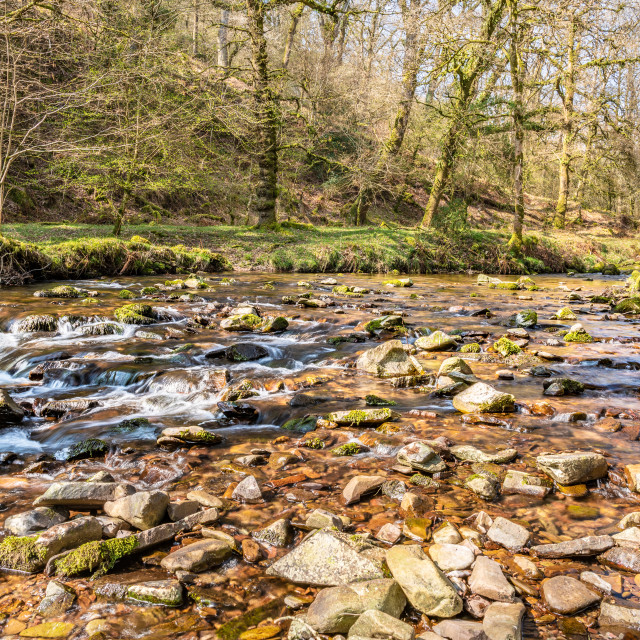 """Flowing River in Horner Woods, Devon, England"" stock image"