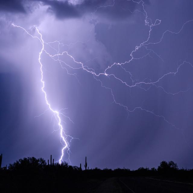 """""""Lightning and rain in the desert"""" stock image"""