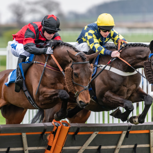 """Just in the lead, Kelso Races, Kelso, Scotland"" stock image"