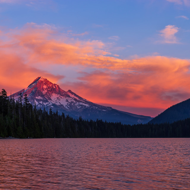 """Sunset alpenglow on the slope of Mt. Hood, Oregon"" stock image"