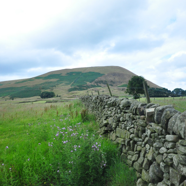 """Peak District"" stock image"