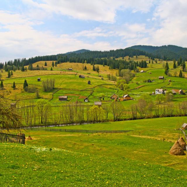 """Summer scene in rural area"" stock image"