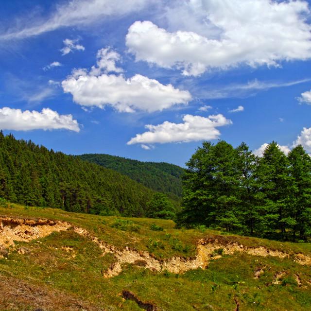 """Landslide and soil erosion on summer mountain"" stock image"