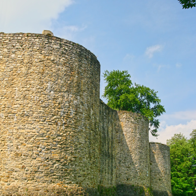 """""""Fortress tower ruins in summer"""" stock image"""