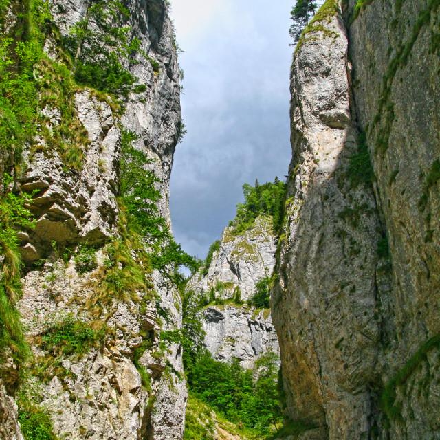 """""""Vertical wall in the Precipice of Zarnesti"""" stock image"""