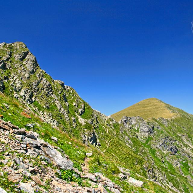 """""""Summer mountain crest in Fagaras mountains"""" stock image"""