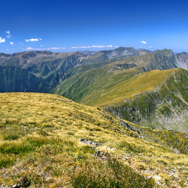 """""""Summer alpine scene in the mountains"""" stock image"""