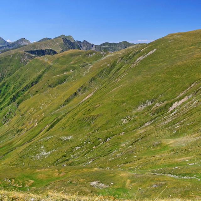 """""""Summer Carpathians landscape alpine area"""" stock image"""
