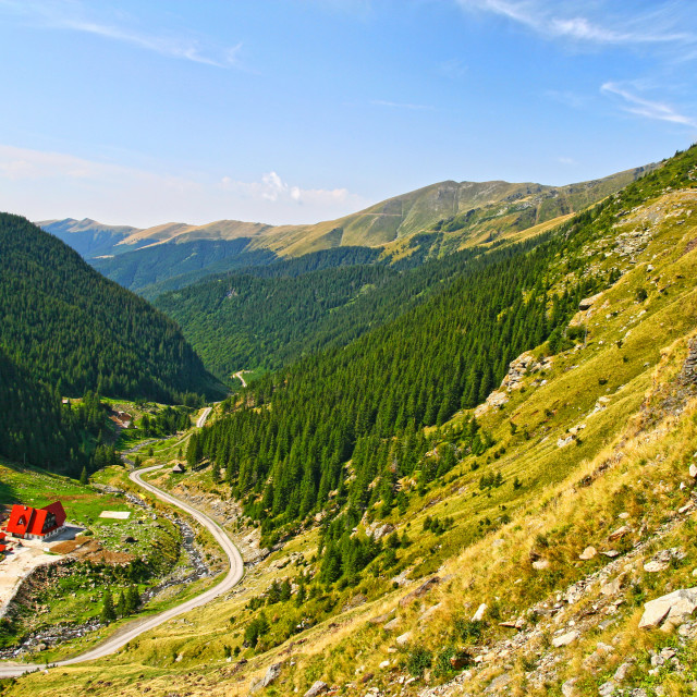 """""""Green alpine valley, chalet near the forest"""" stock image"""