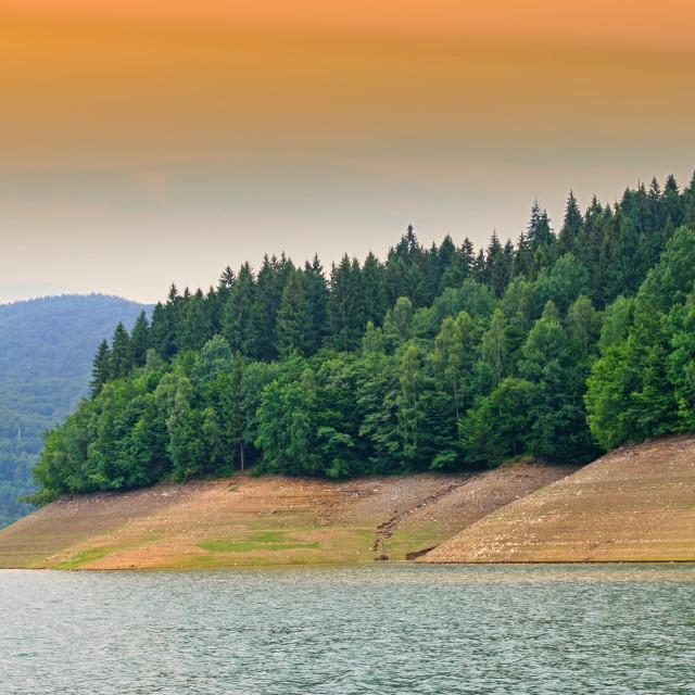 """Low level of water lake"" stock image"
