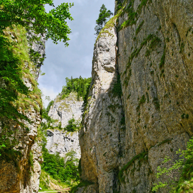 """""""Rock wall bordering the road"""" stock image"""