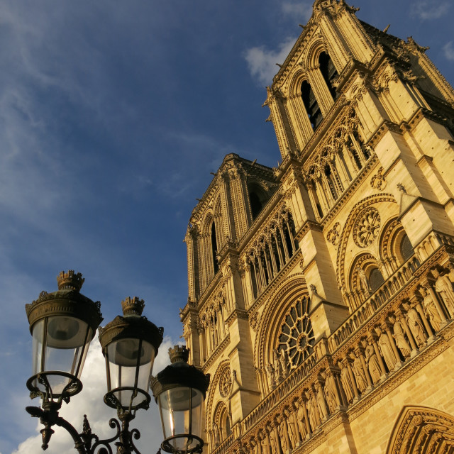 """Sunset on Notre Dame"" stock image"