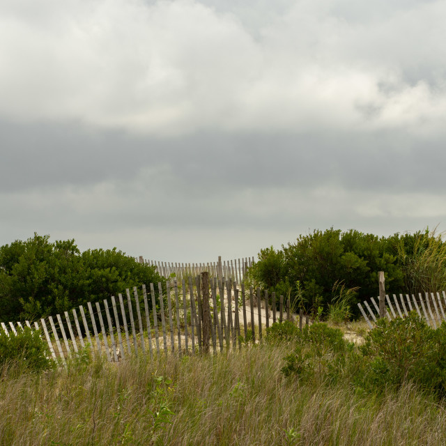 """Fence along the Seashore"" stock image"