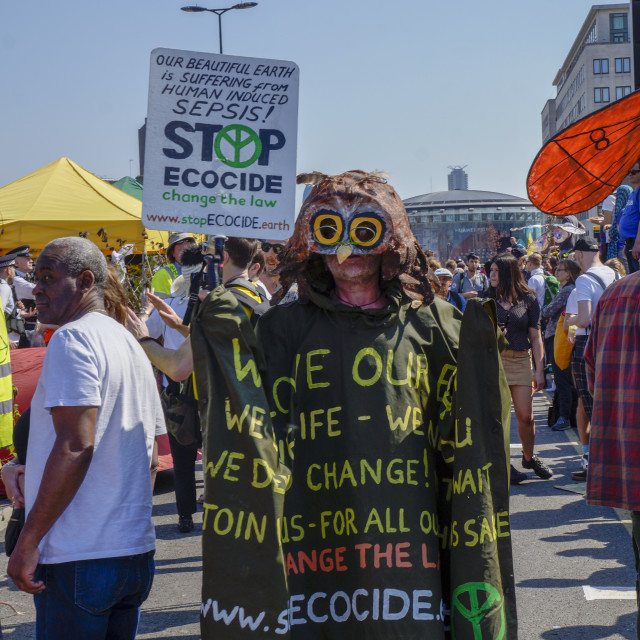 """Waterloo bridge Extinction Rebellion protester"" stock image"