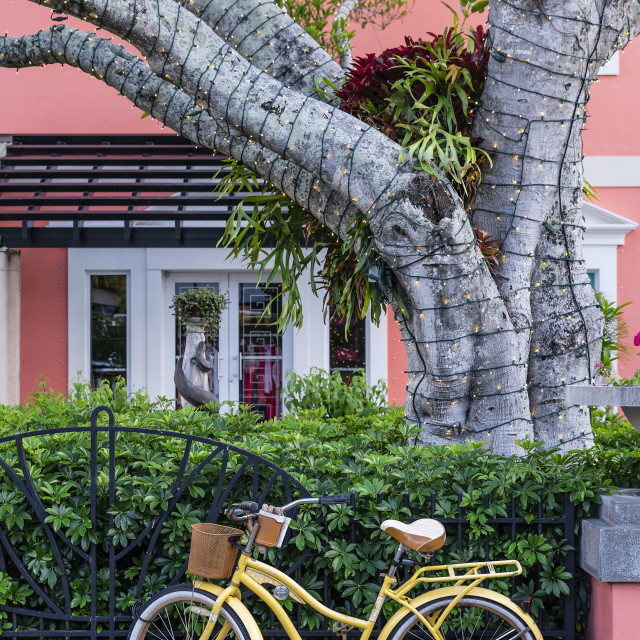 """Charming downtown Old Naples, Florida"" stock image"