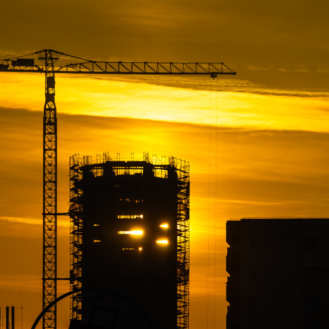 """""""Cranes and buildings at sunset"""" stock image"""