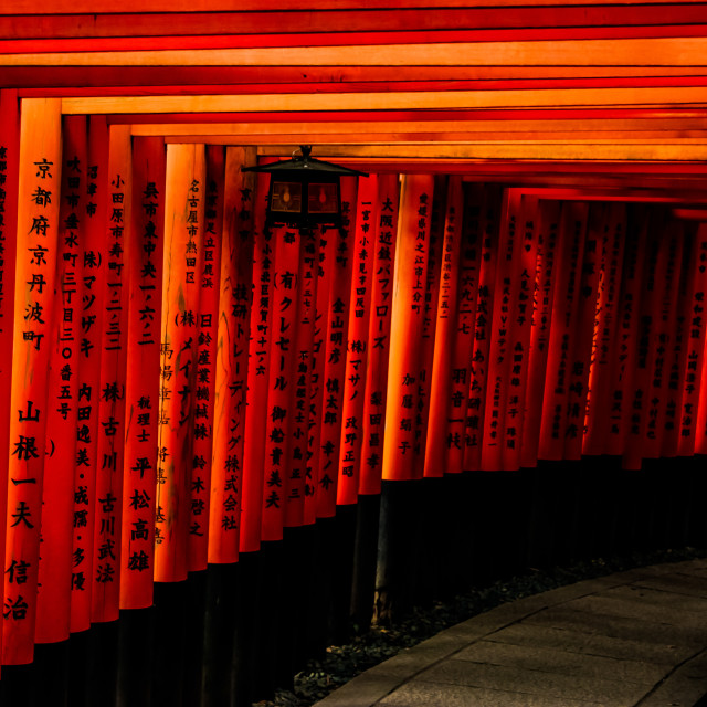 """Fushimi Inari Shrine Torii Gates, Kyoto, Japan"" stock image"