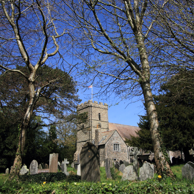 """""""St Petroc's Church South Brent"""" stock image"""