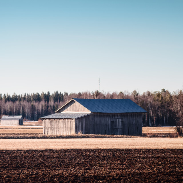 """""""Old Barn Houses On The Spring Fields"""" stock image"""