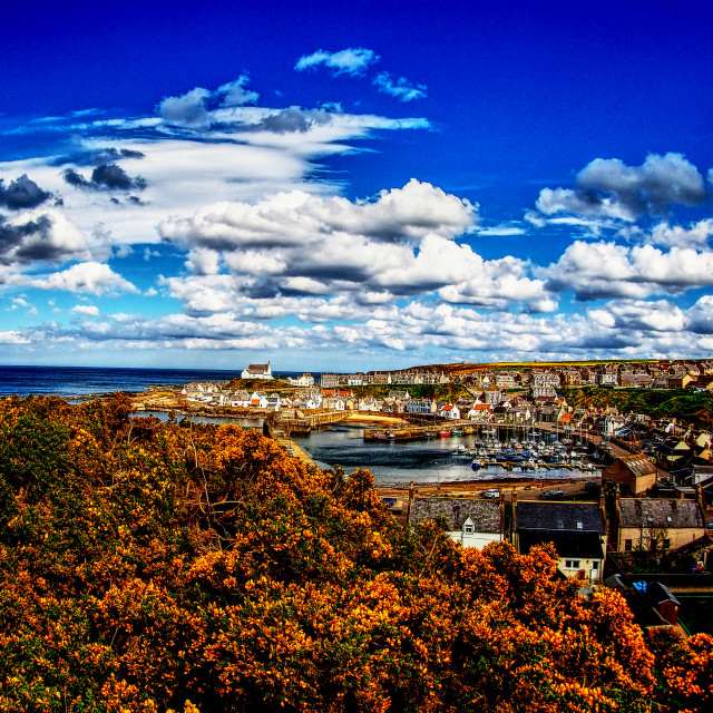 """""""View from a Hill"""" stock image"""