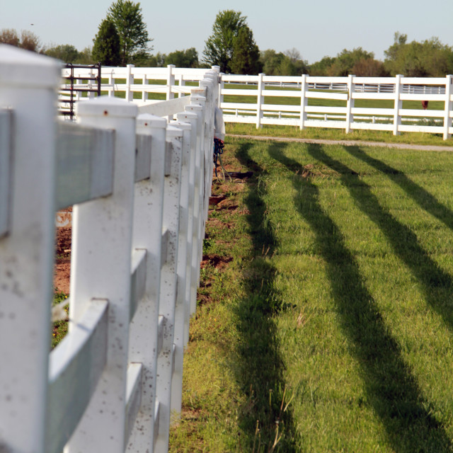 """Vinyl Farm Fence"" stock image"