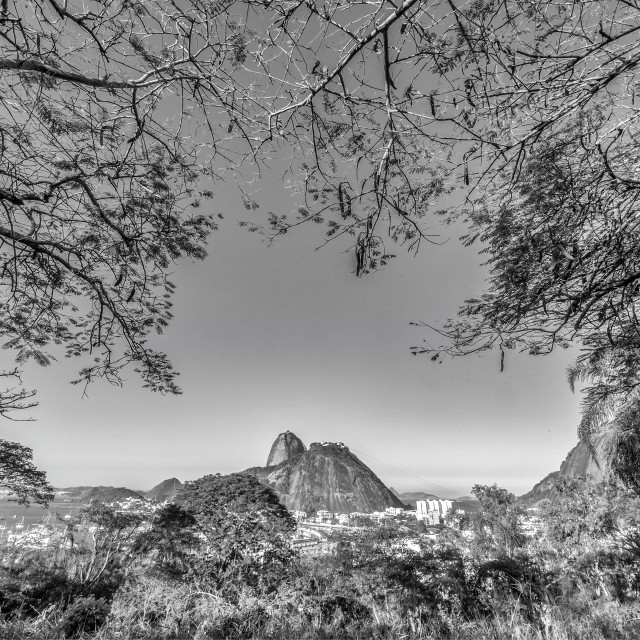 """Sugar Loaf with Trees"" stock image"