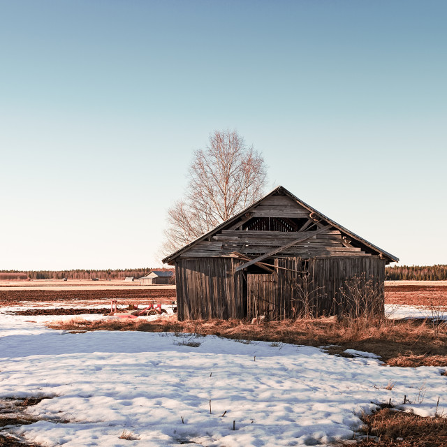 """Barn House In The Springtime Sun"" stock image"