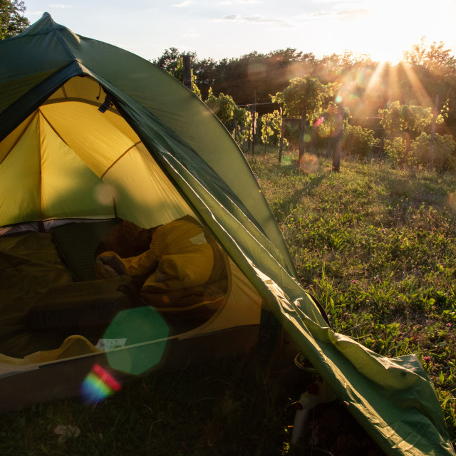 """""""Tent in the vineyards"""" stock image"""
