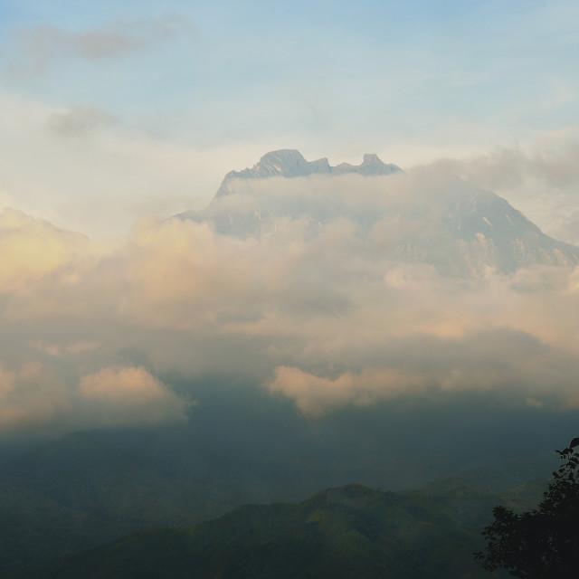 """""""Mt Kinabalu"""" stock image"""