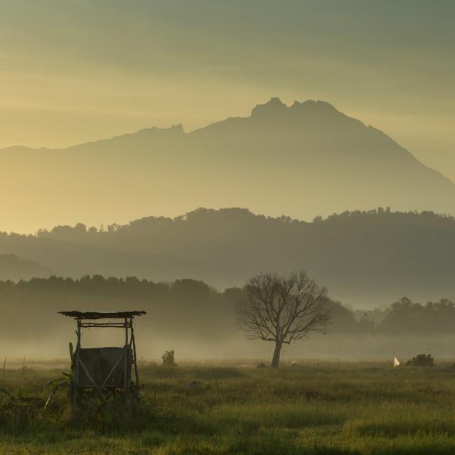 """""""Mt Kinabalu sunrise."""" stock image"""