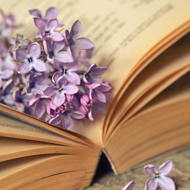 """""""Lilac flowers with old book"""" stock image"""