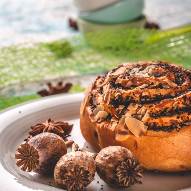 """""""Few poppy heads on white plate with sweet baked bun and spices"""" stock image"""