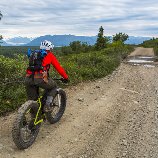 """""""A man fat biking on a dirt road near Eurika on a cloudy summer day in..."""" stock image"""