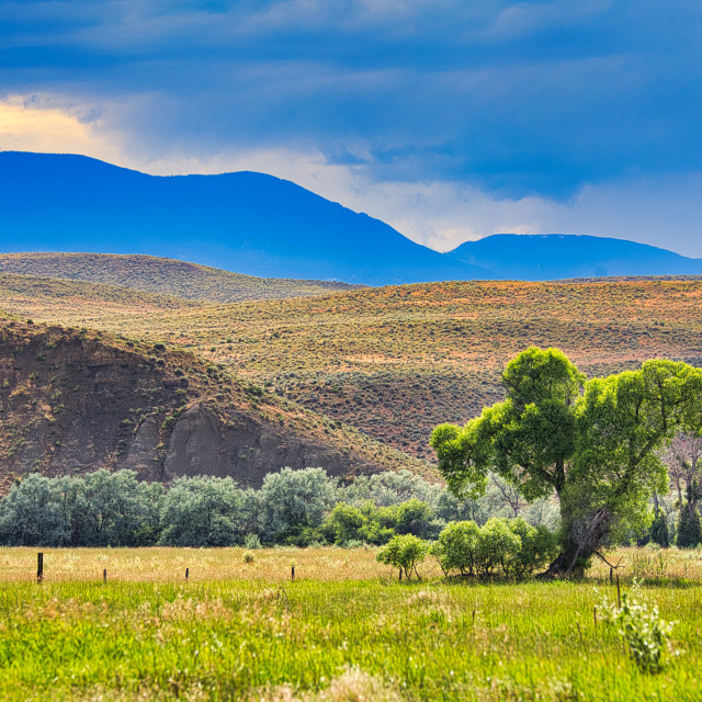 """""""Mountains and meadows"""" stock image"""