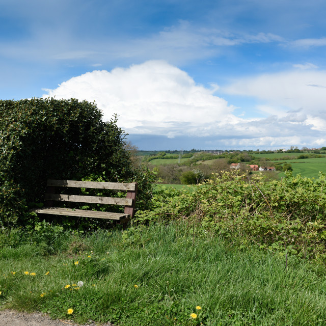 """""""Bench Along Countryside Route."""" stock image"""